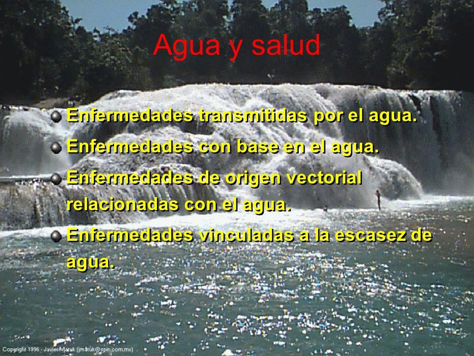 Agua y salud Enfermedades transmitidas por el agua.