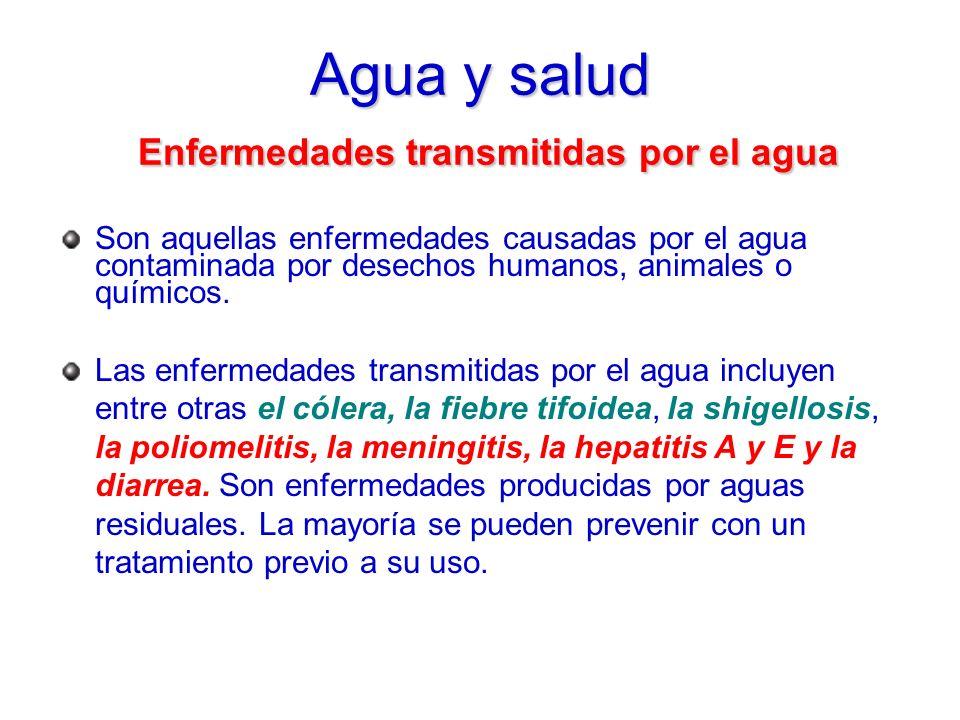 Agua y salud Enfermedades transmitidas por el agua
