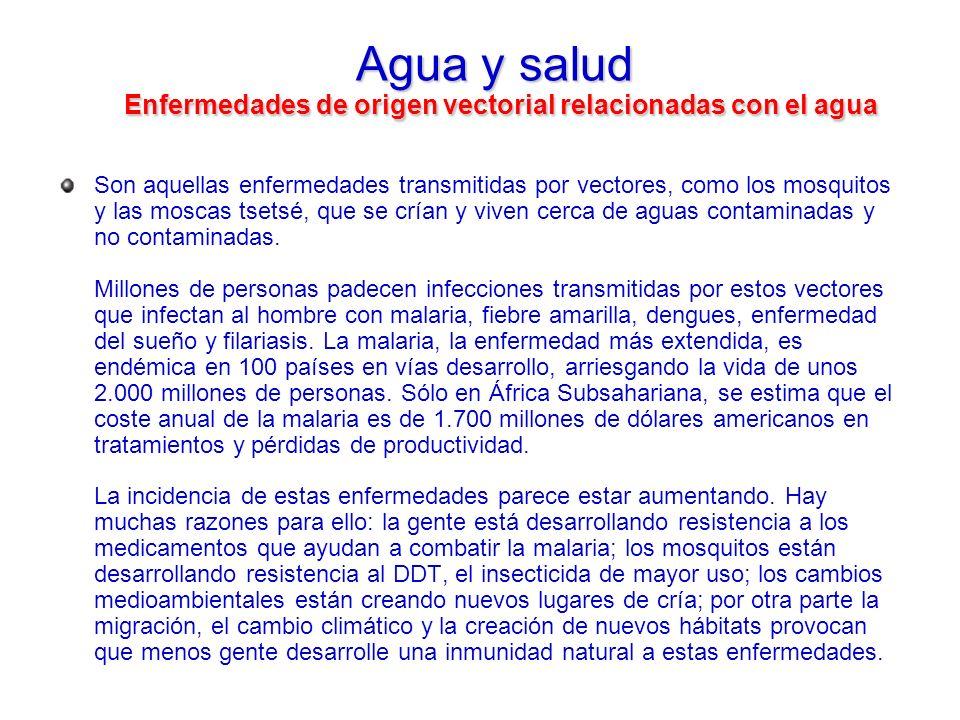 Agua y salud Enfermedades de origen vectorial relacionadas con el agua