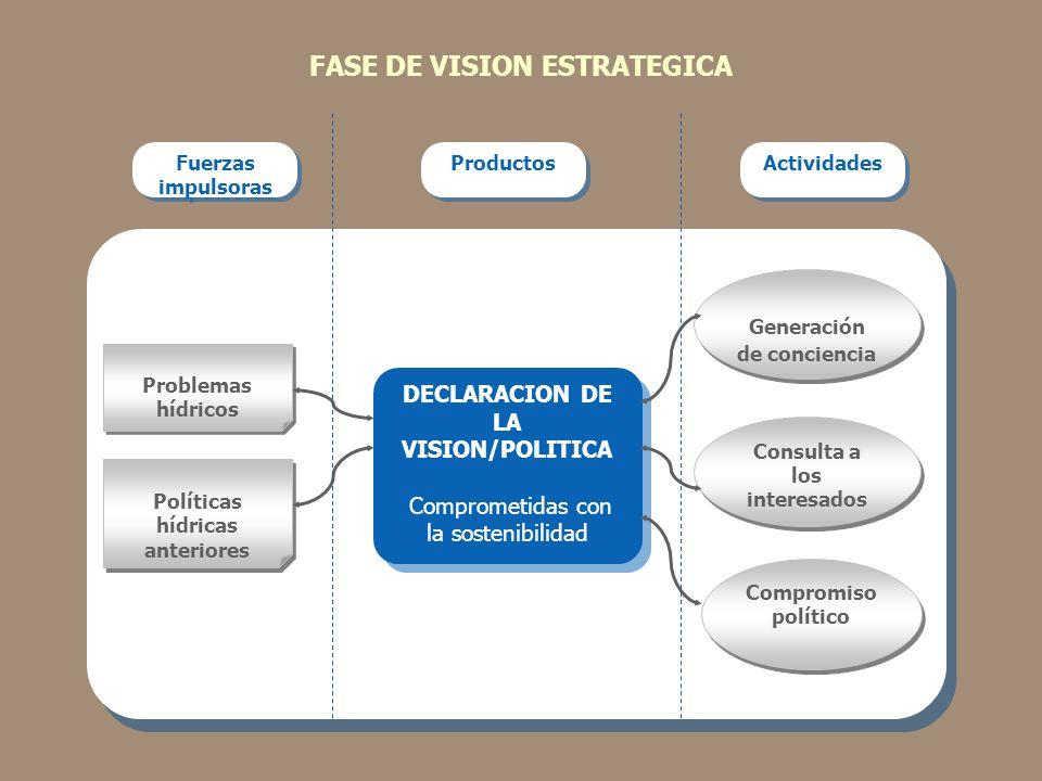 FASE DE VISION ESTRATEGICA