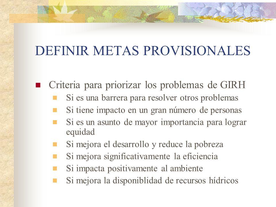 DEFINIR METAS PROVISIONALES