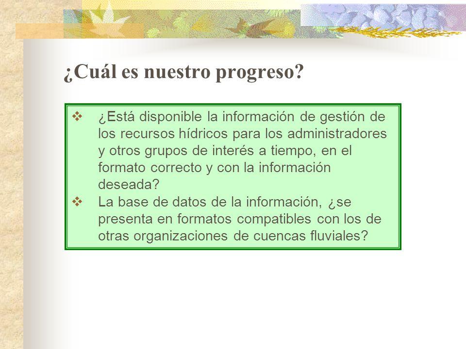 ¿Cuál es nuestro progreso