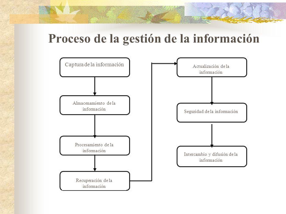 Proceso de la gestión de la información