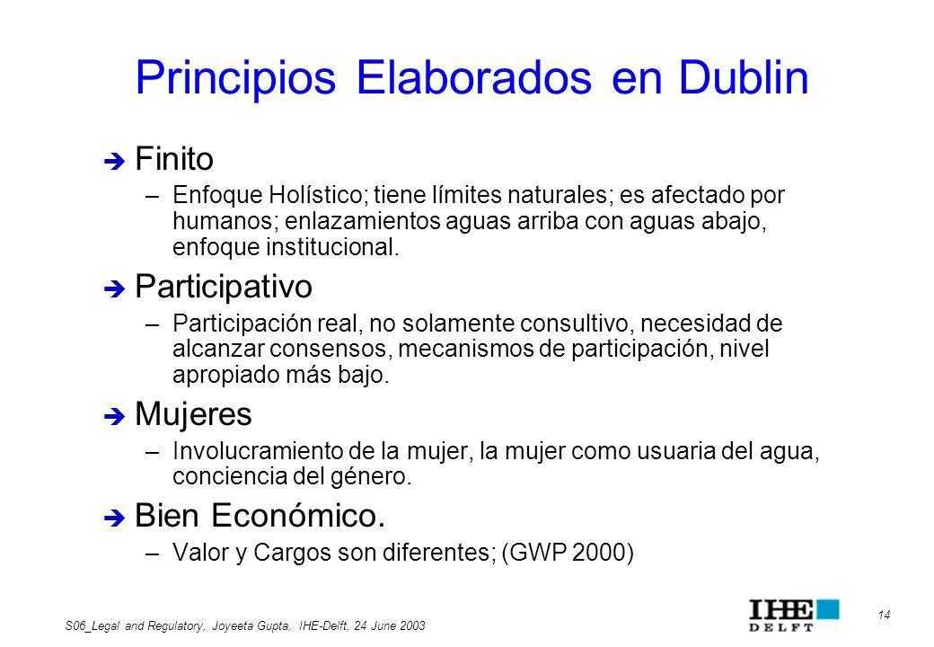 Principios Elaborados en Dublin