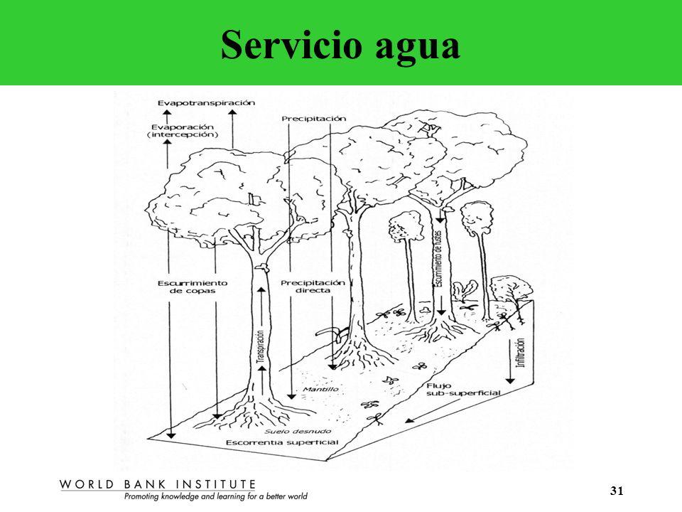 Servicio agua