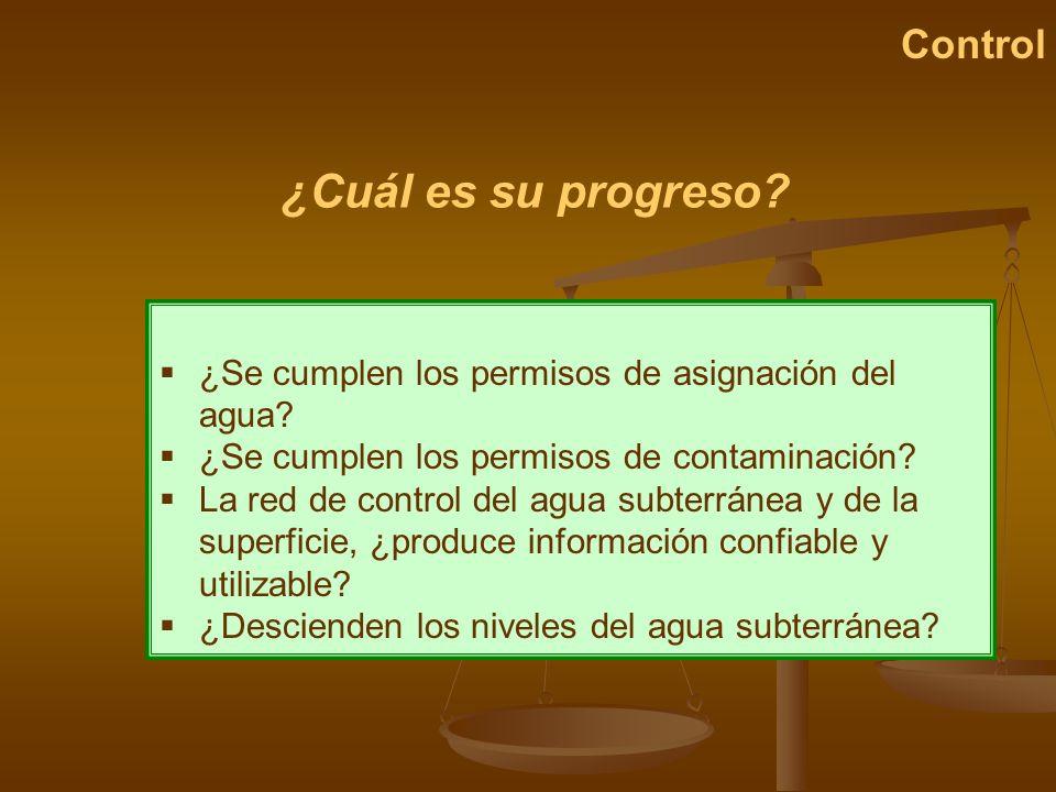 ¿Cuál es su progreso Control