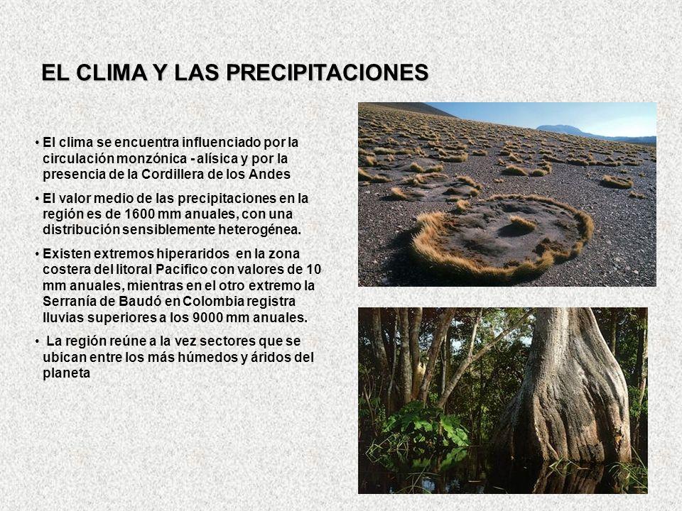 EL CLIMA Y LAS PRECIPITACIONES