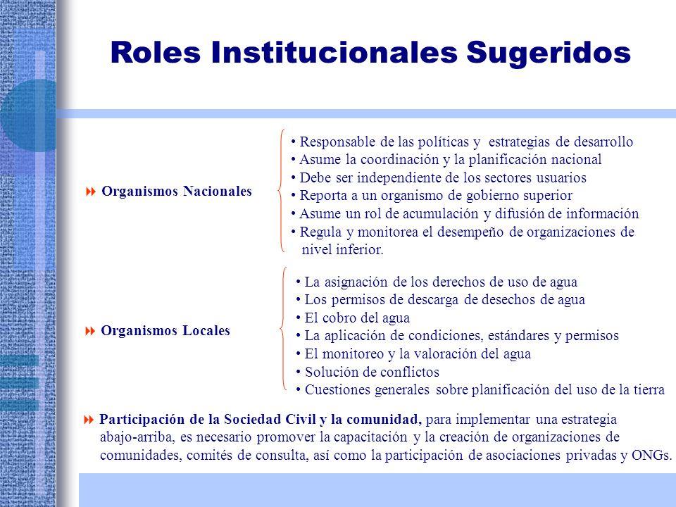 Roles Institucionales Sugeridos