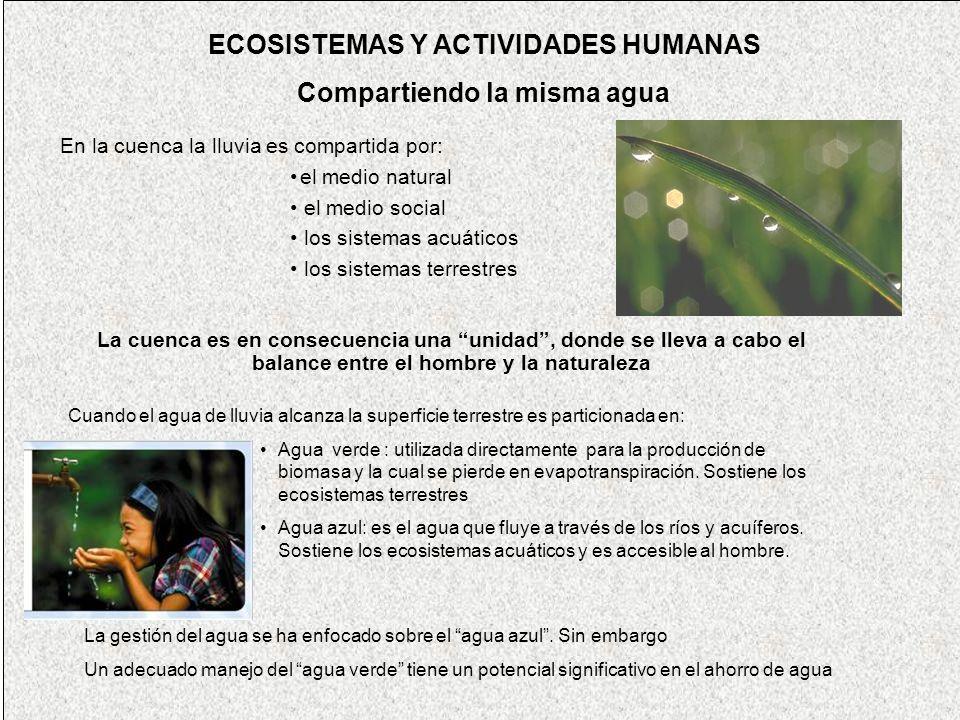 ECOSISTEMAS Y ACTIVIDADES HUMANAS Compartiendo la misma agua