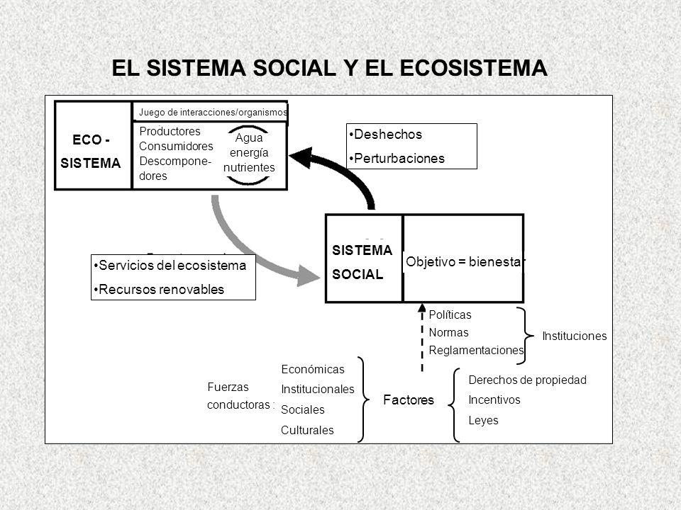 EL SISTEMA SOCIAL Y EL ECOSISTEMA