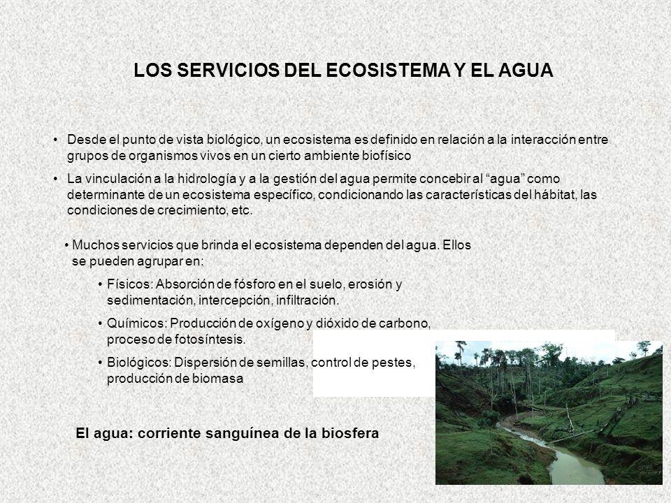 LOS SERVICIOS DEL ECOSISTEMA Y EL AGUA