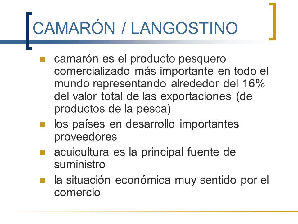 CAMARÓN / LANGOSTINO