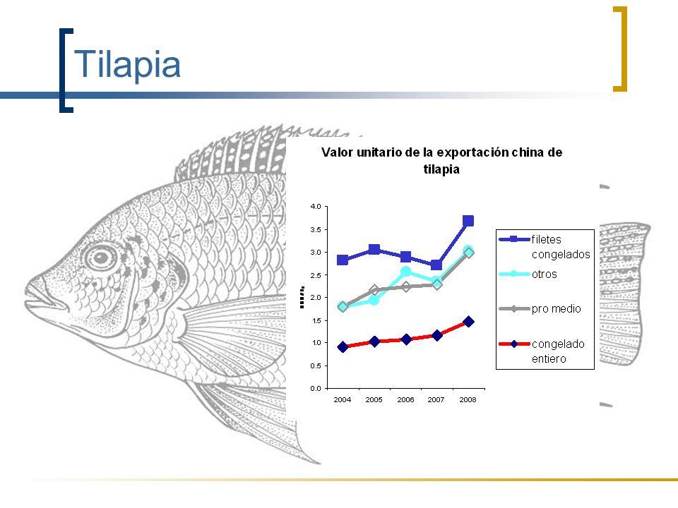 Tilapia El valor de la tilapia exportada por la China está aumentando cada año, especialmente el valor de los filetes congelados,