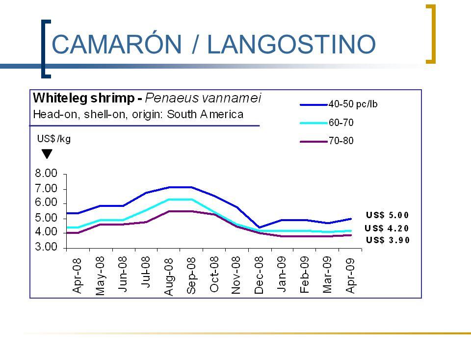 CAMARÓN / LANGOSTINO También en Europa los precios se están estabilizando, después de un periodo a la baja.