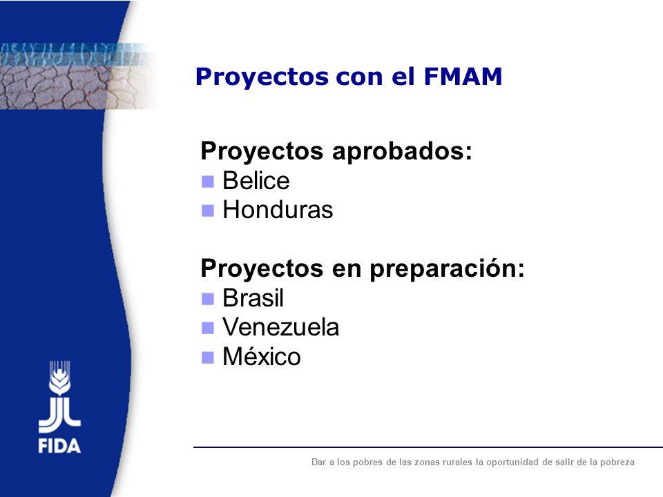 Proyectos en preparación: Brasil Venezuela México