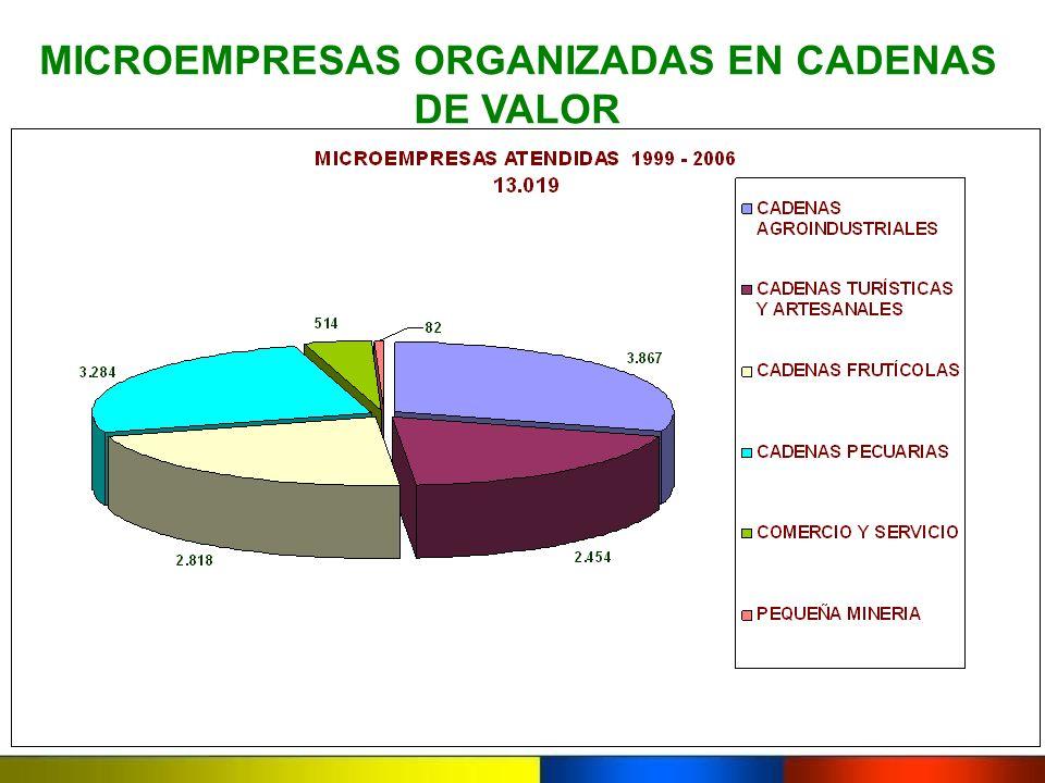 MICROEMPRESAS ORGANIZADAS EN CADENAS