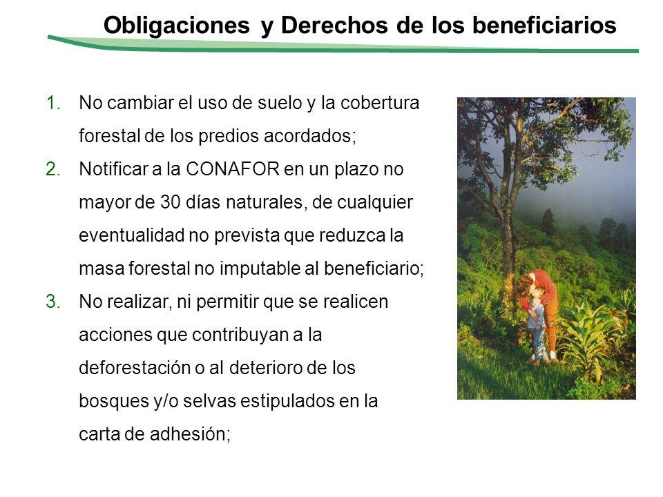 Obligaciones y Derechos de los beneficiarios