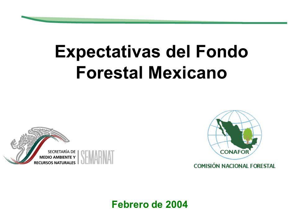 Expectativas del Fondo Forestal Mexicano
