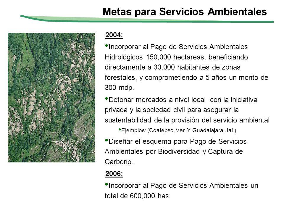 Metas para Servicios Ambientales