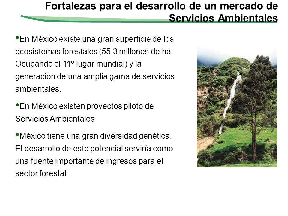 Fortalezas para el desarrollo de un mercado de Servicios Ambientales