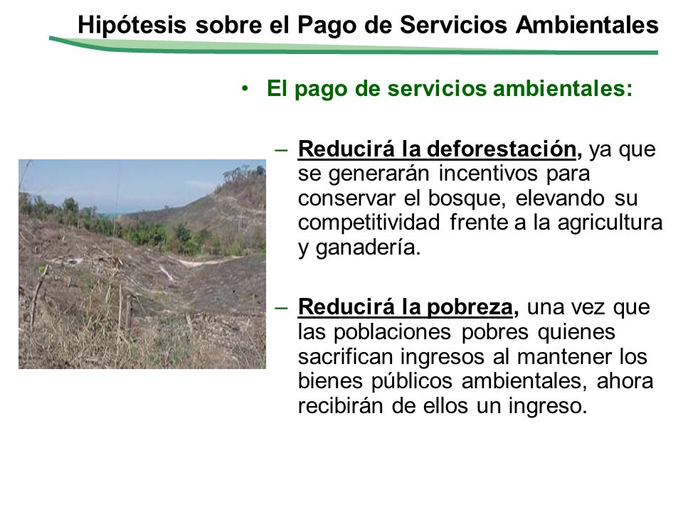 Hipótesis sobre el Pago de Servicios Ambientales