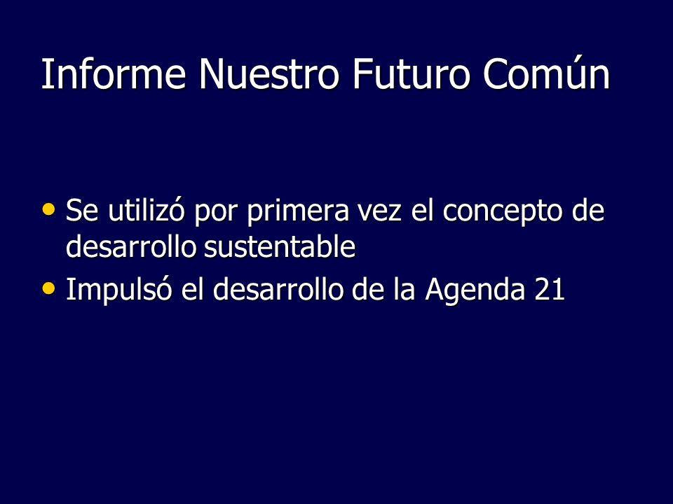 Informe Nuestro Futuro Común