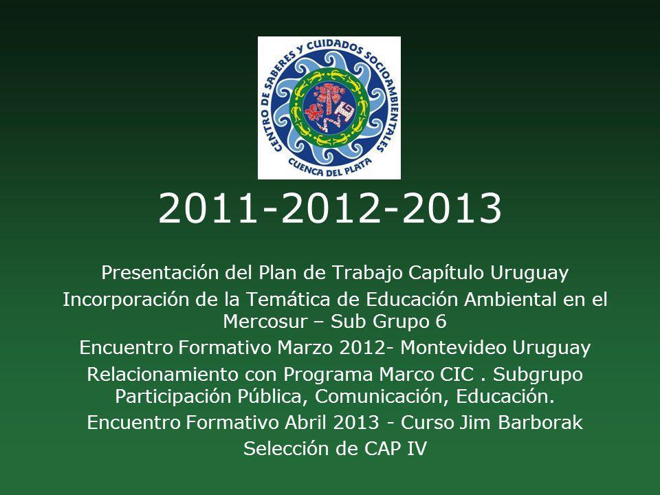2011-2012-2013 Presentación del Plan de Trabajo Capítulo Uruguay