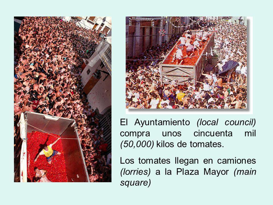 El Ayuntamiento (local council) compra unos cincuenta mil (50,000) kilos de tomates.