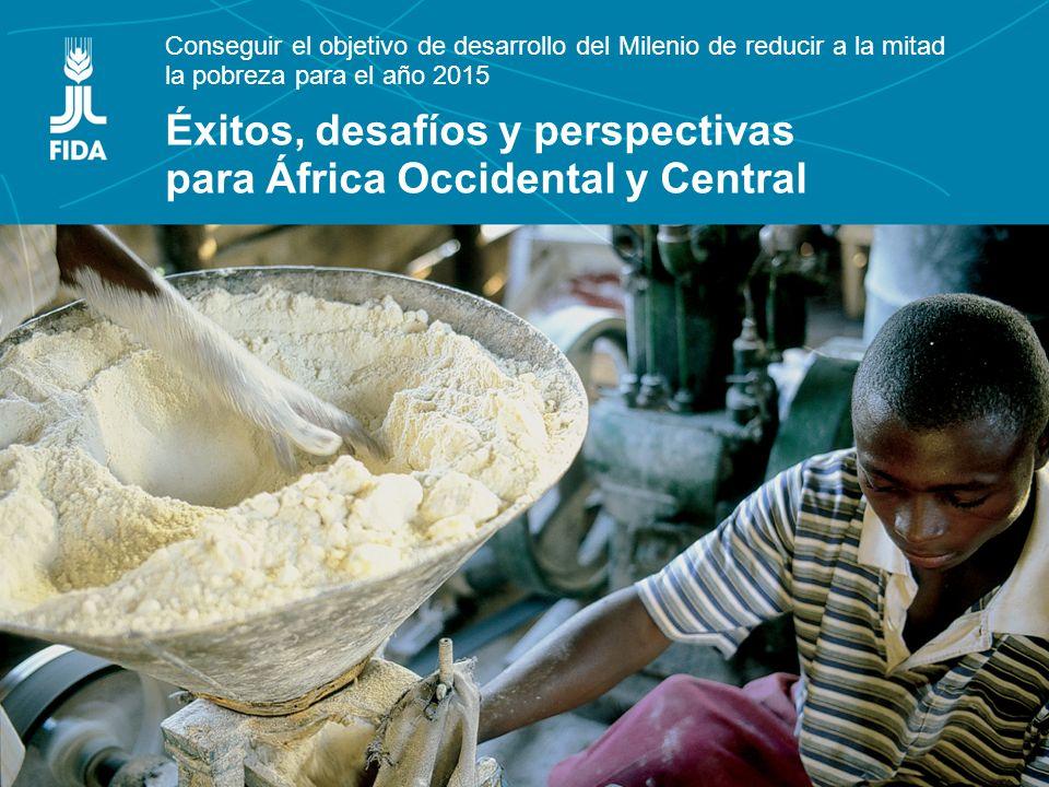 Conseguir el objetivo de desarrollo del Milenio de reducir a la mitad la pobreza para el año 2015 Éxitos, desafíos y perspectivas para África Occidental y Central