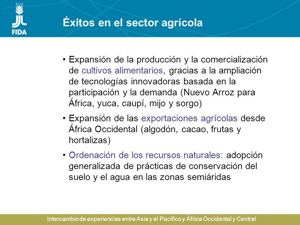 Éxitos en el sector agrícola