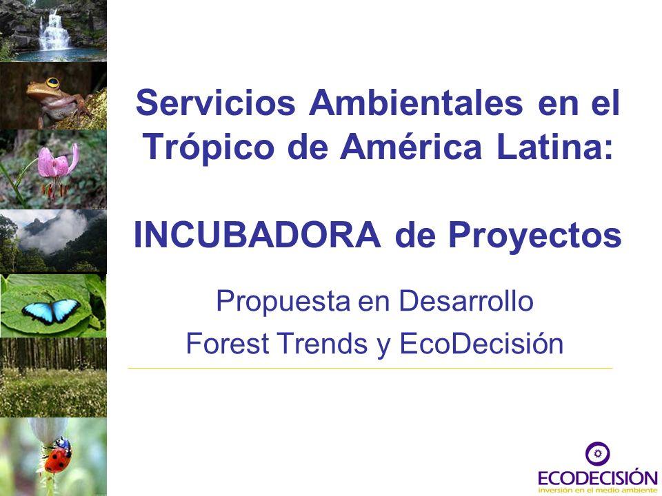 Propuesta en Desarrollo Forest Trends y EcoDecisión