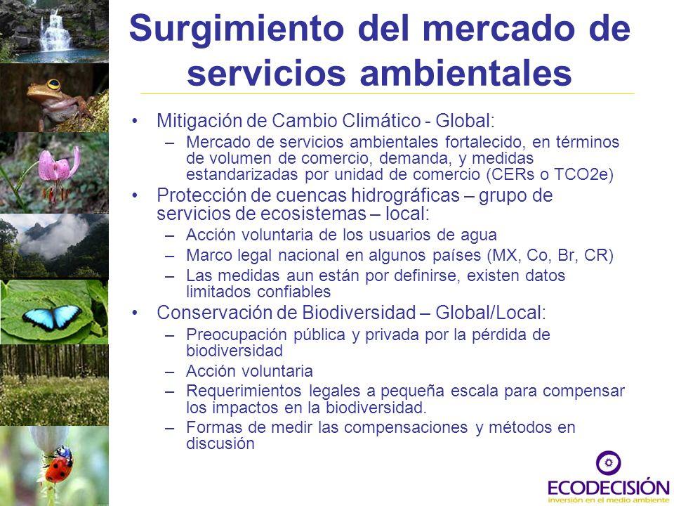 Surgimiento del mercado de servicios ambientales