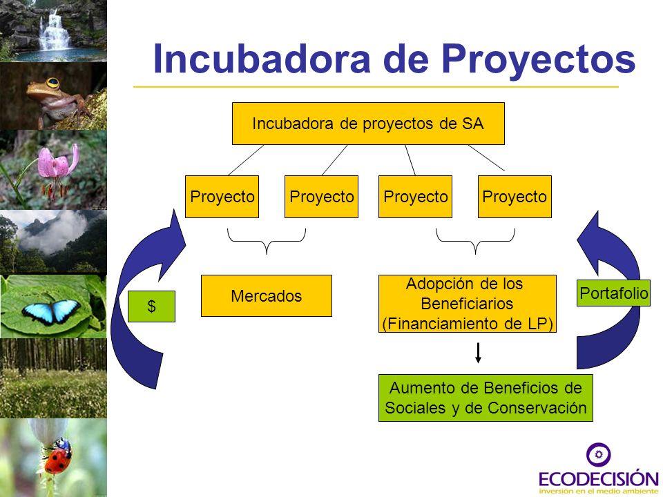 Incubadora de Proyectos