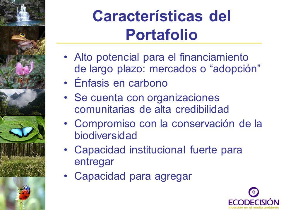 Características del Portafolio