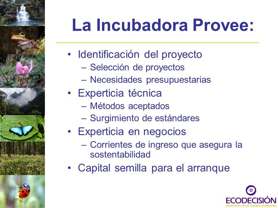 La Incubadora Provee: Identificación del proyecto Experticia técnica