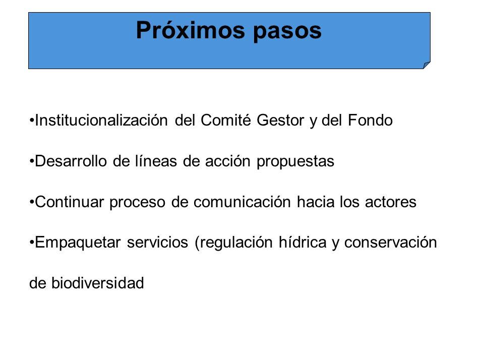 Próximos pasos Institucionalización del Comité Gestor y del Fondo