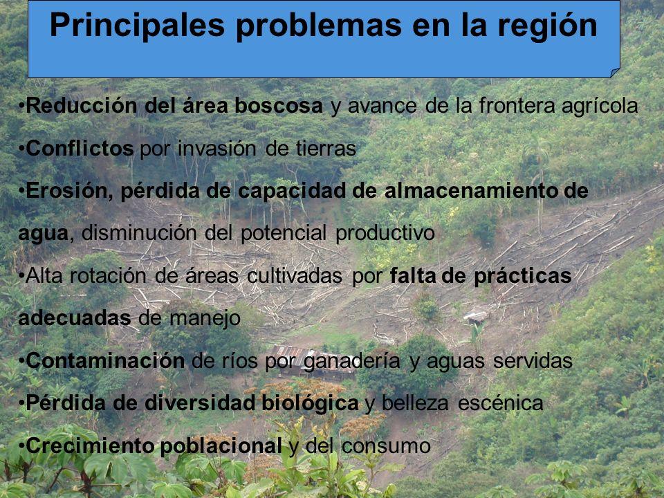 Principales problemas en la región