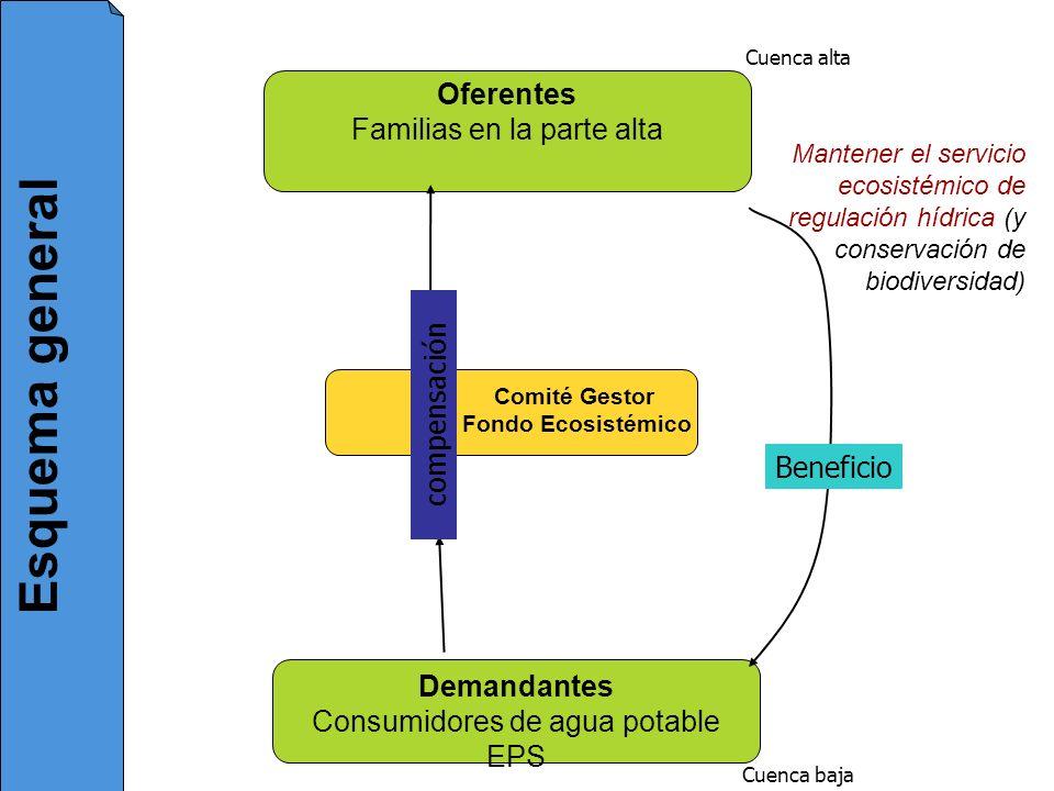 Esquema general Oferentes Familias en la parte alta compensación
