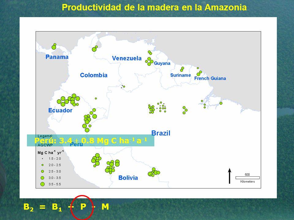 Productividad de la madera en la Amazonia