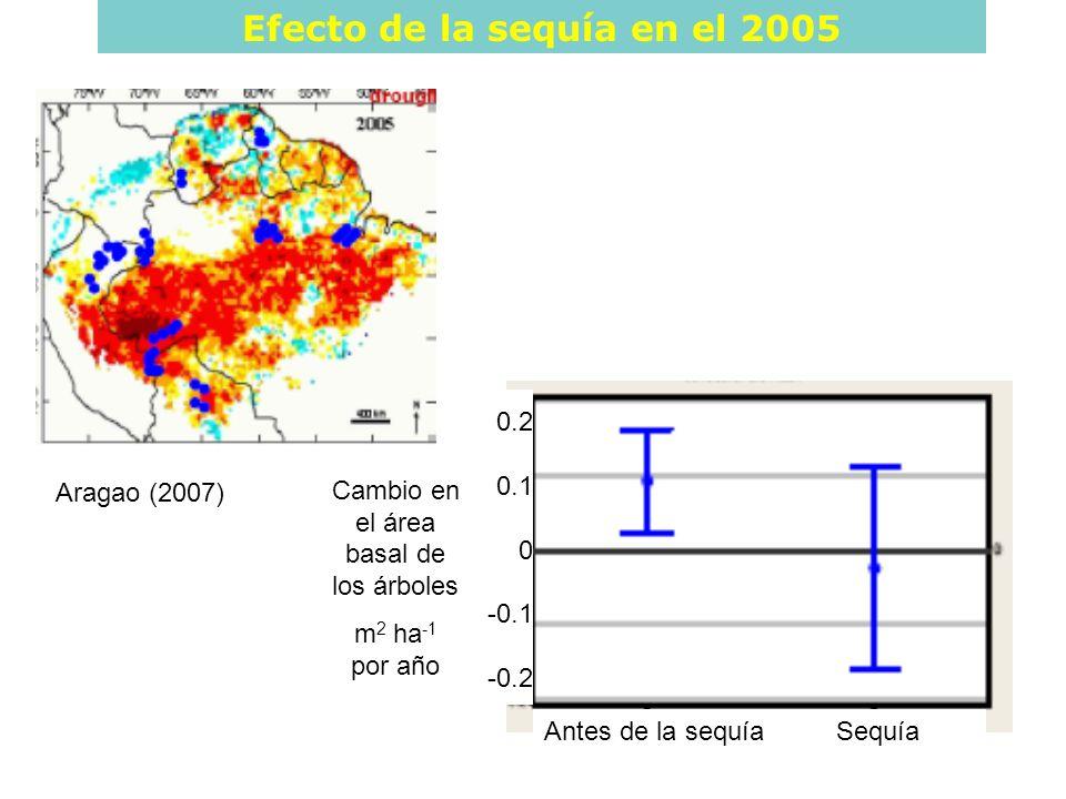 Efecto de la sequía en el 2005