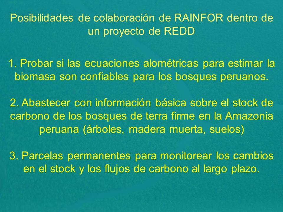 Posibilidades de colaboración de RAINFOR dentro de un proyecto de REDD 1.