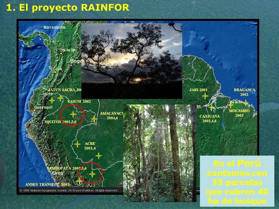 En el Perú contamos con 35 parcelas que cubren 40 ha de bosque