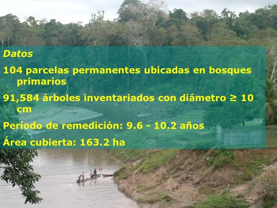 104 parcelas permanentes ubicadas en bosques primarios