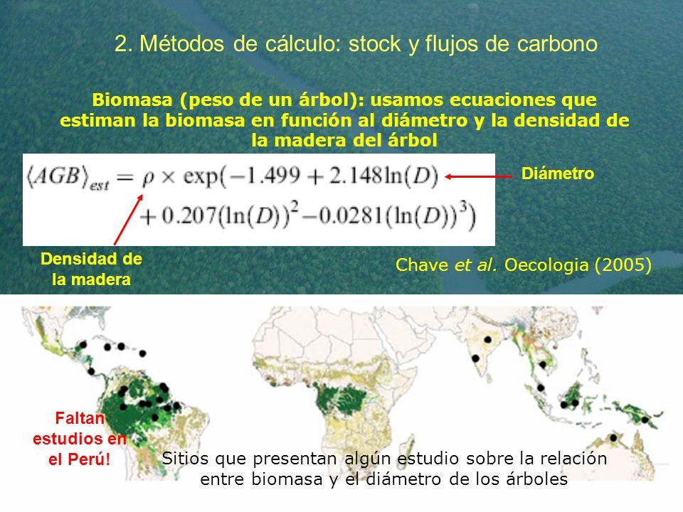 2. Métodos de cálculo: stock y flujos de carbono