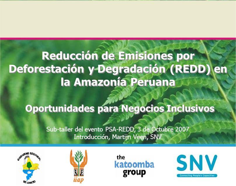 Reducción de Emisiones por Deforestación y Degradación (REDD) en la Amazonía Peruana Oportunidades para Negocios Inclusivos