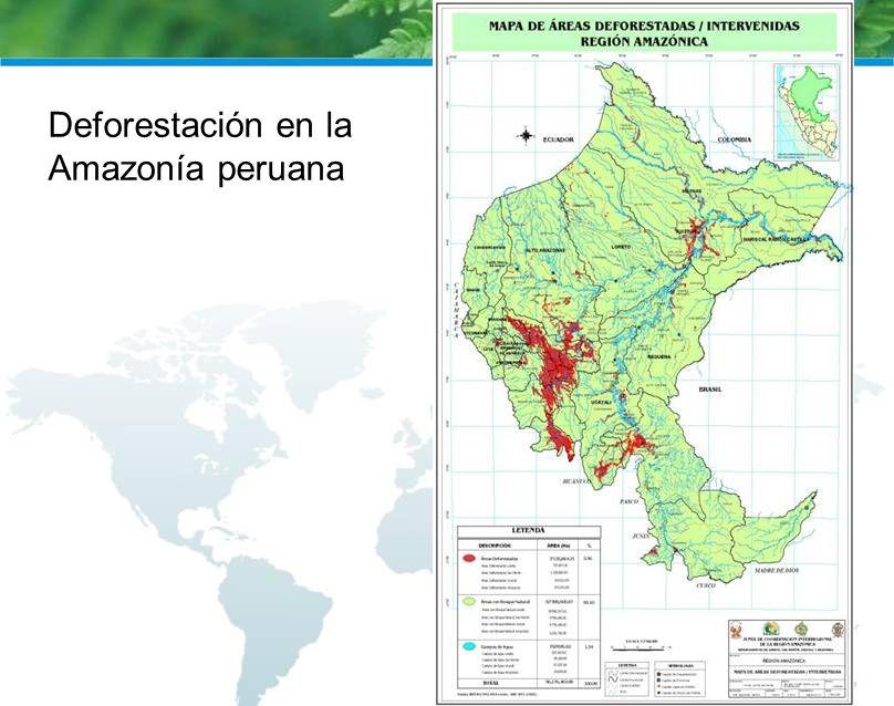 Deforestación en la Amazonía peruana