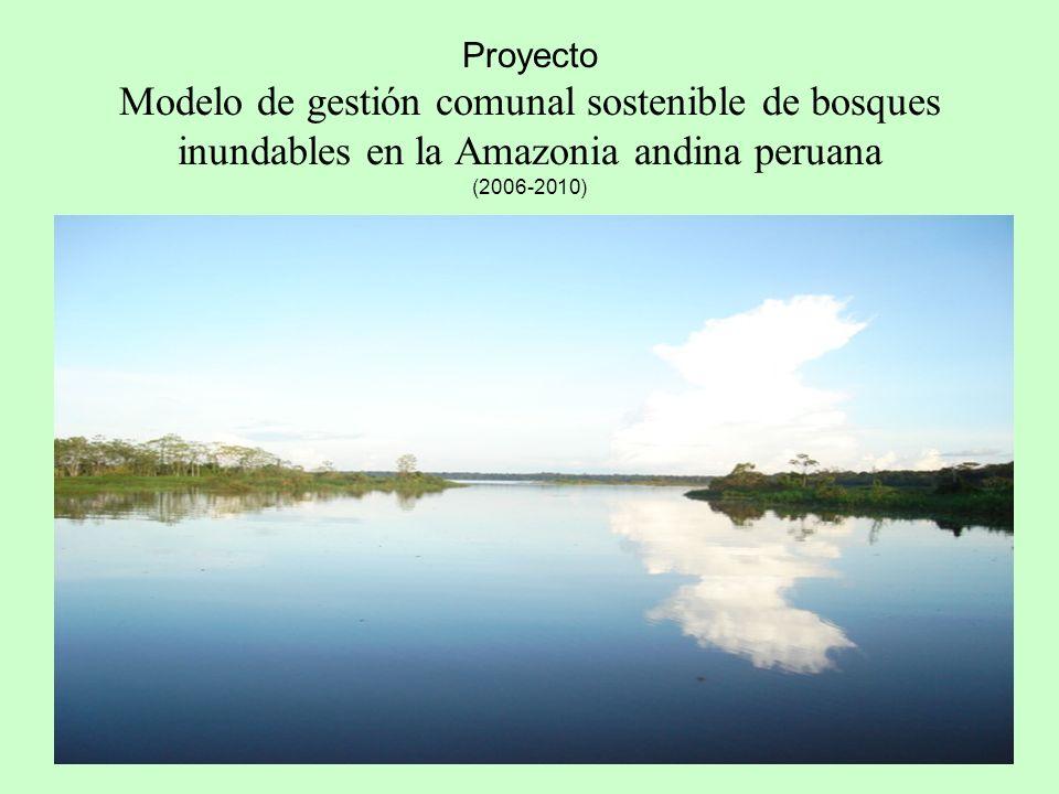 Proyecto Modelo de gestión comunal sostenible de bosques inundables en la Amazonia andina peruana (2006-2010) (BOSQUES INUNDABLES)