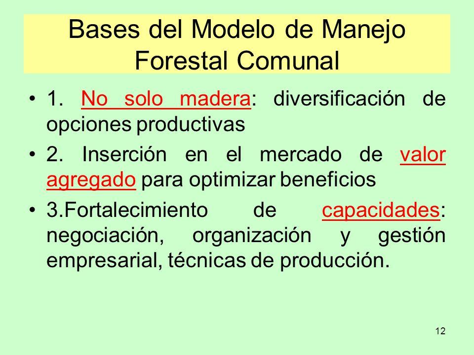 Bases del Modelo de Manejo Forestal Comunal