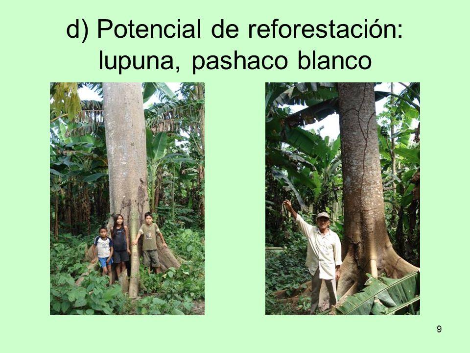 d) Potencial de reforestación: lupuna, pashaco blanco