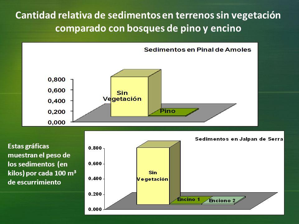 Cantidad relativa de sedimentos en terrenos sin vegetación comparado con bosques de pino y encino